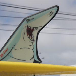 BQ Shark atmosphere