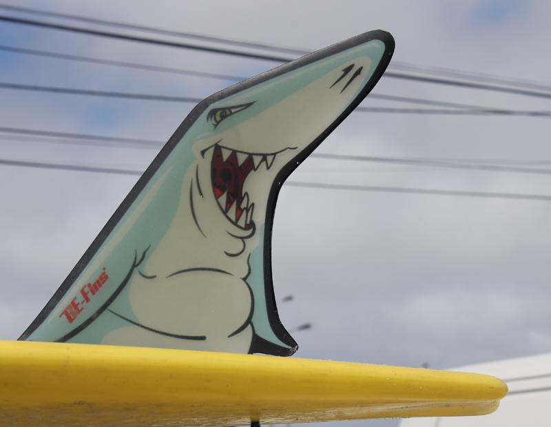 BQ Fins Shark